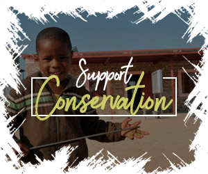 Support Conservation in Namibia