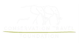 Conservation Travel Foundation Logo