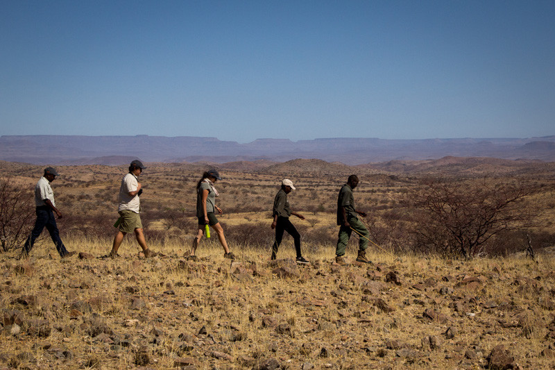 Rhino Ranger Team